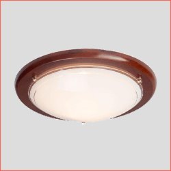 Clearance Ceiling Lights