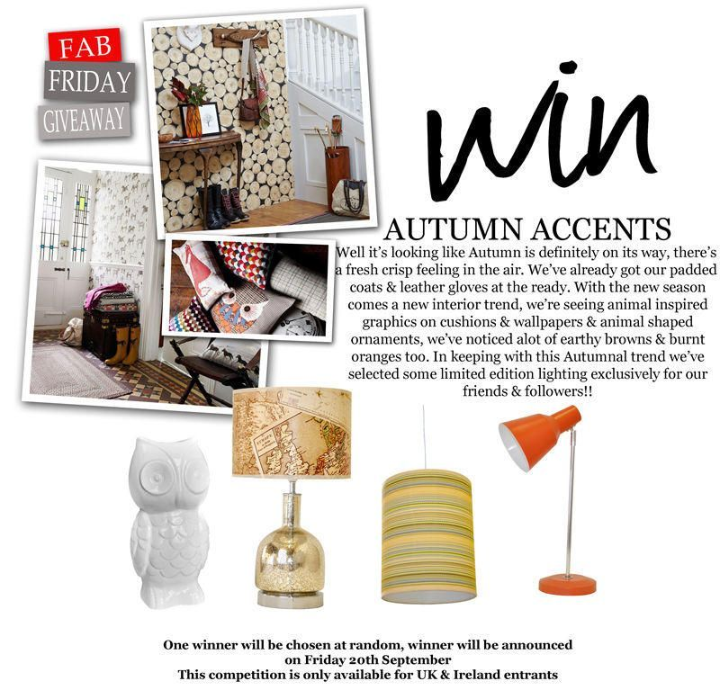 Fab Friday Giveaway