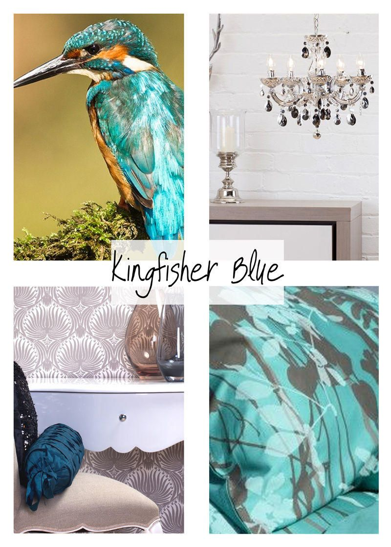 Kingfisher-Blue-42-min