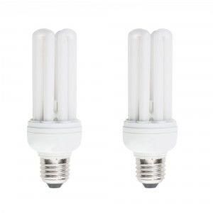 CFL energy saving light bulbs