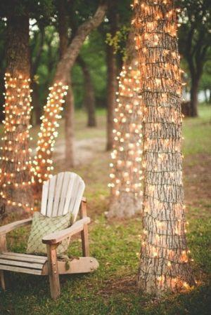 garden-lights-tree-lights