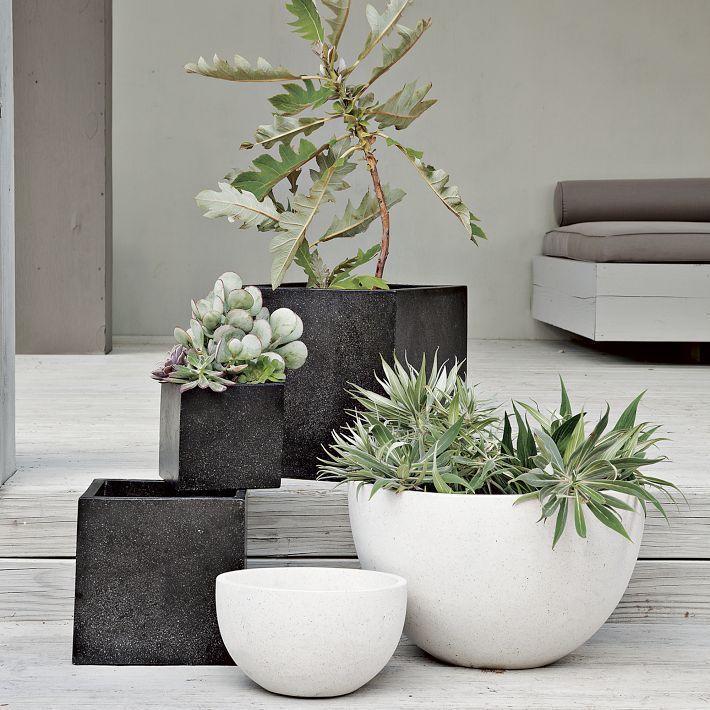 Outdoor-lighting-Monochrome-Alfresco-Succulents