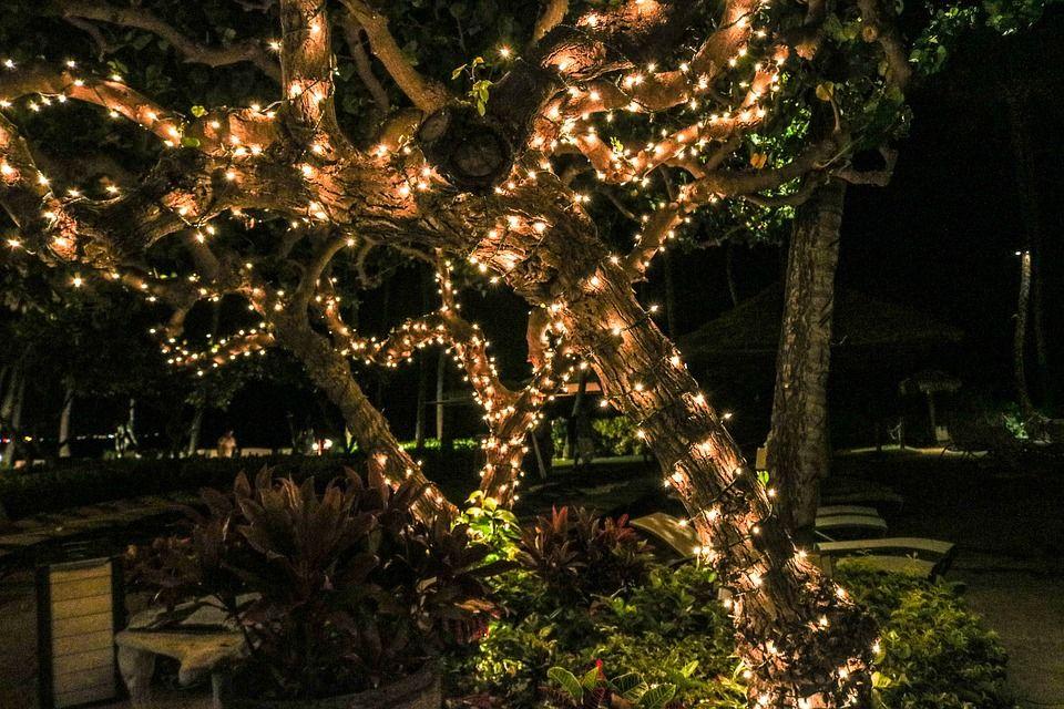 Outdoor Solar Fairy Lights