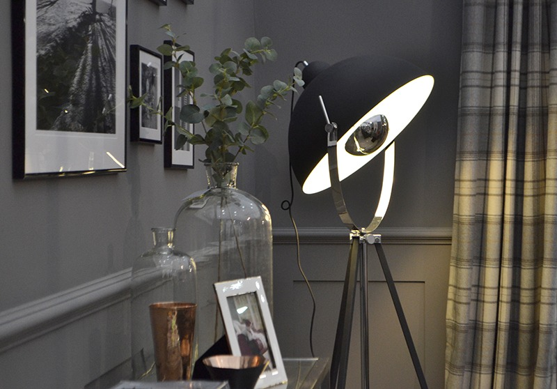 Parabolic Floor Lamp
